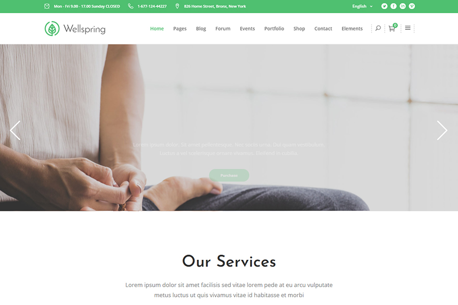 Wellspring - Health, Lifestyle & Wellness Theme